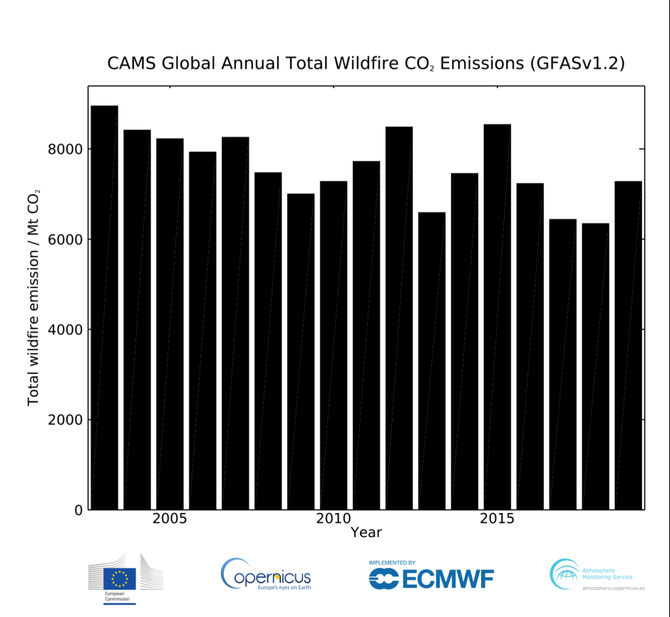 Graf CAMS Global Annual Total Wildfire CO2 Emissions